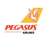 Pegasus Airlines Electronic Luggage Restrictions