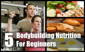 Bodybuilding Nutrition For Beginners