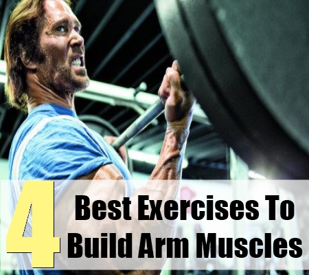 Build Arm Muscles
