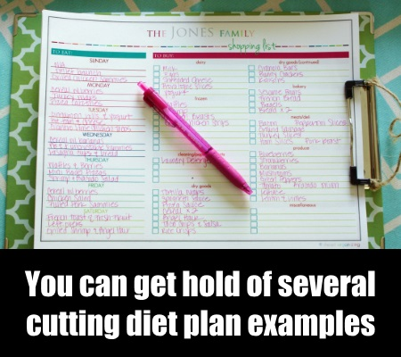 Diet Plan Example