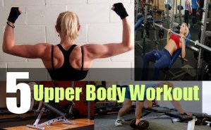 5 Upper Body Workout