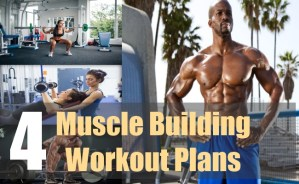 4 Muscle Building Workout Plans