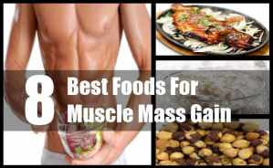 Muscle Mass Gain
