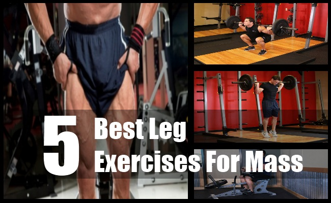 Leg Exercises For Mass