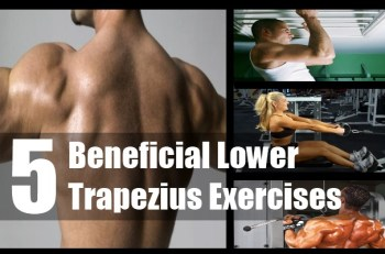 Beneficial Lower Trapezius Exercises