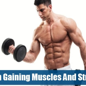 Tips On Gaining Muscles And Strength