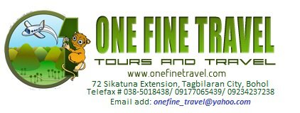 one fine tavel and tours