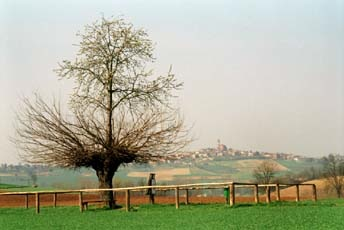 granadoubletree.jpg