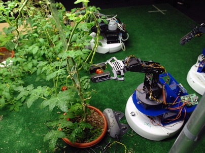 Newsoffice 2009 Robogarden-2-Enlarged