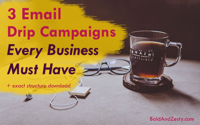 3 Email Drip Campaigns Every Business Must Have