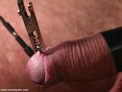 basic bondage knots