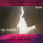 Yes, Mistress by NJ Cole