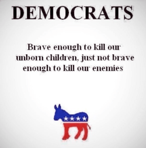Democrats are brave enough