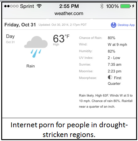Rain forecast as internet pron