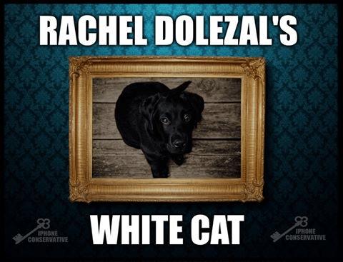 Rachel Dolezal' cat