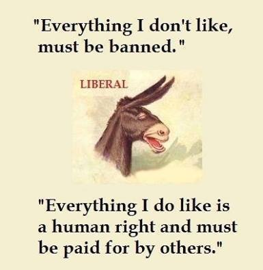 Liberals illiberality