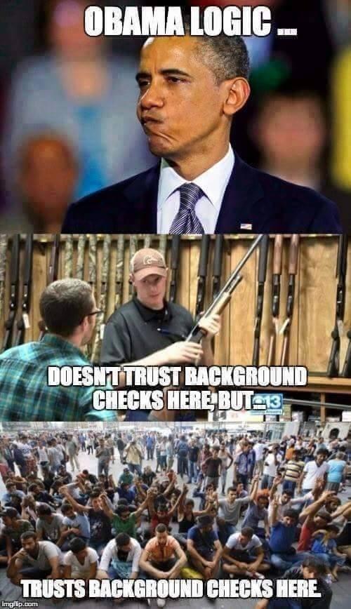 Obama logic on background checks
