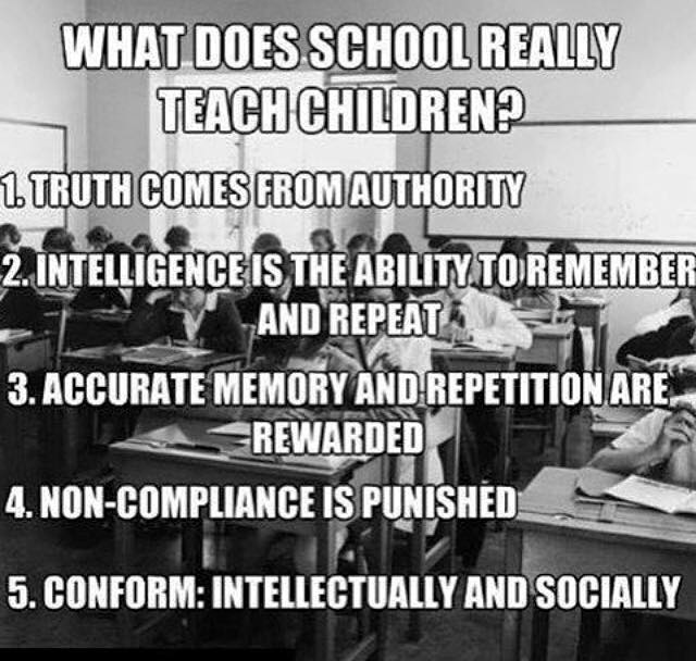 What our education system teaches children