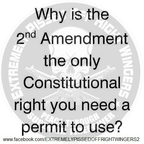 Second Amendment permit required