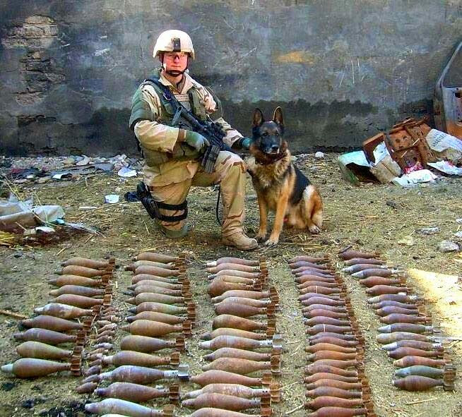 Troops and dogs 4
