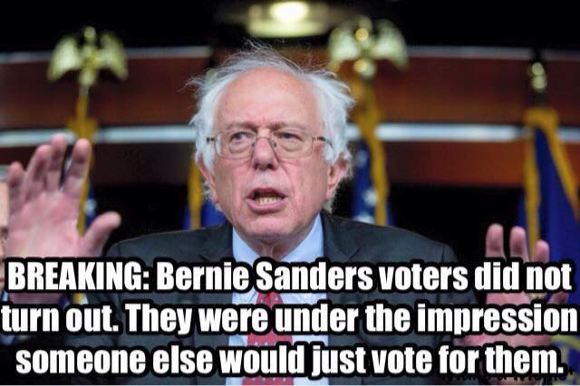 Bernie Sanders others vote for them