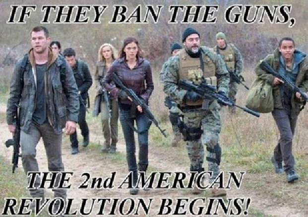 If guns banned second revolution