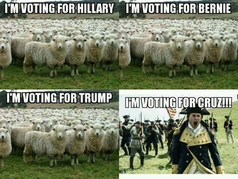 Rebels vote for Cruz