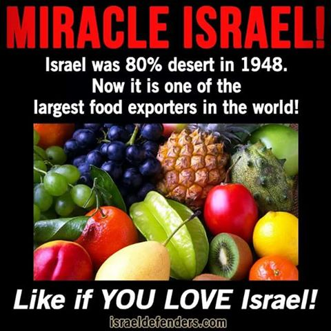 Israel exports food from a desert