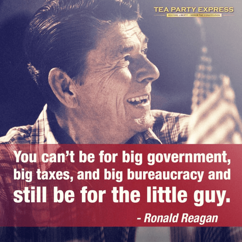 Wisdom Government Reagan Bureaucracy
