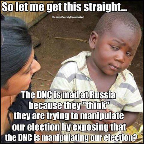 Democrats manipulating election