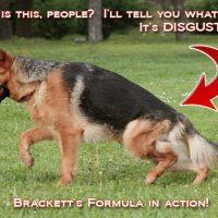 Brackett's Formula for Failure