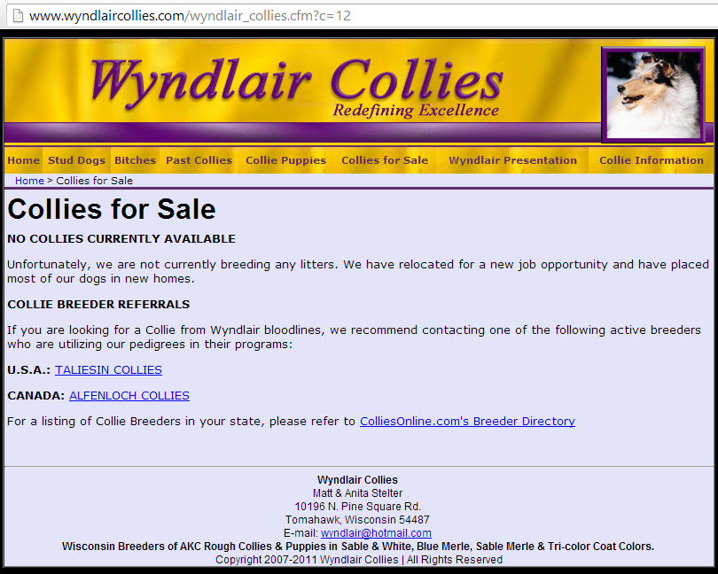 Wyndlair Double Merle Collie Kennel Closes