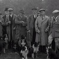 Historical Videos of Border Collies and Sheep Trials