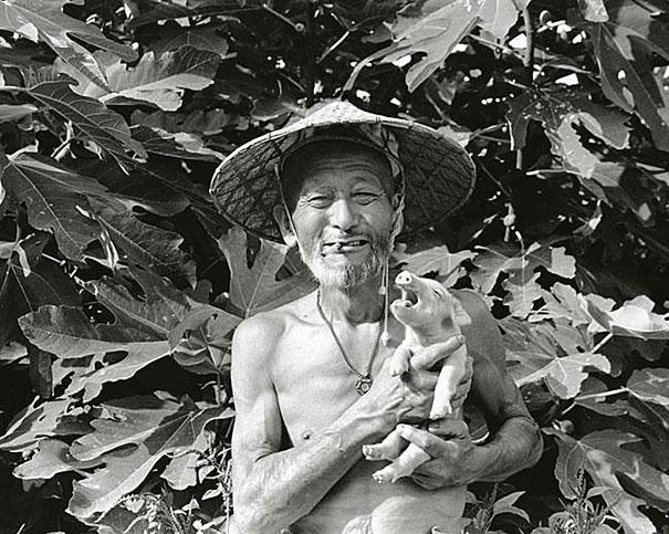 otchan-cute-pig-farmer-toshiteru-yamaji-16