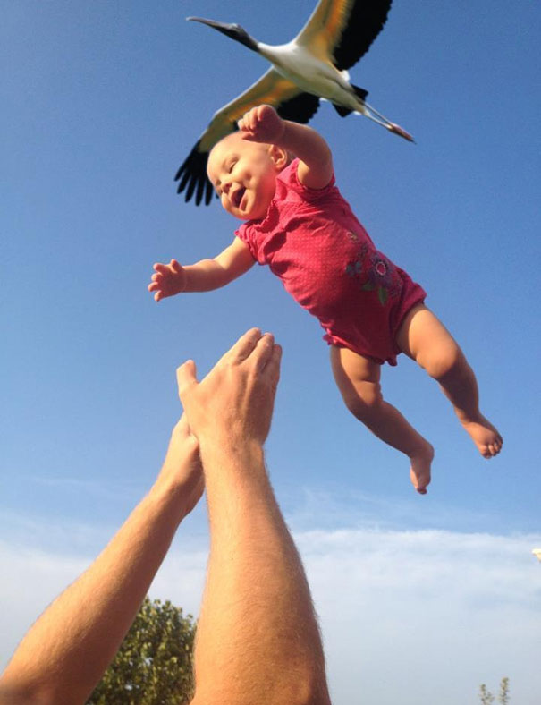 perfectly-timed-photos-91