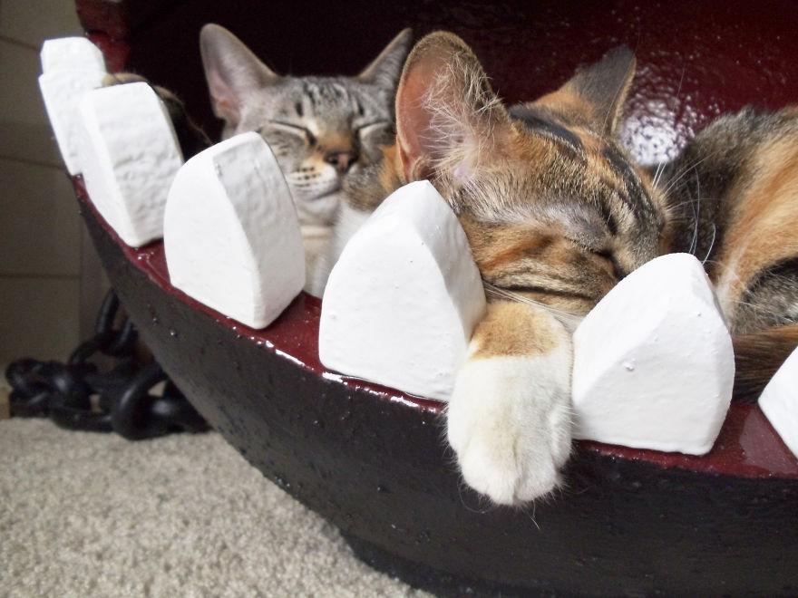 cama-gatos-chompy-super-mario-catastrophicreations (5)