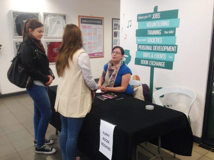 habitacion-cachorros-estudiantes-estresados-universidad-lancashire (3)