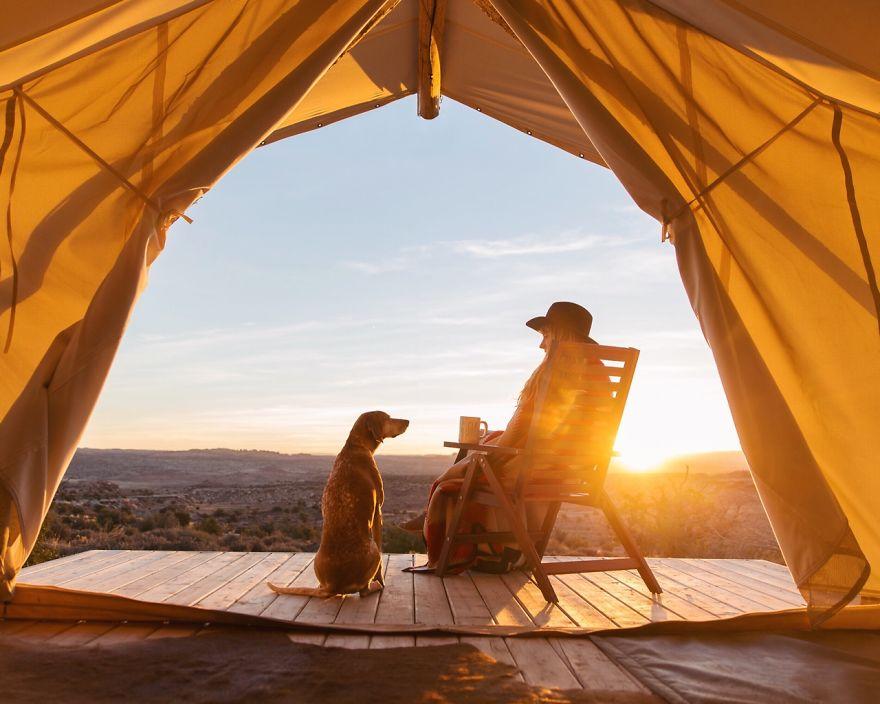 perro-maddie-viajes-moto-theron-humphrey (8)