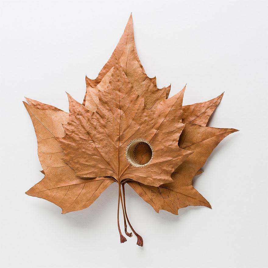 arte-hojas-ganchillo-susanna-bauer (18)