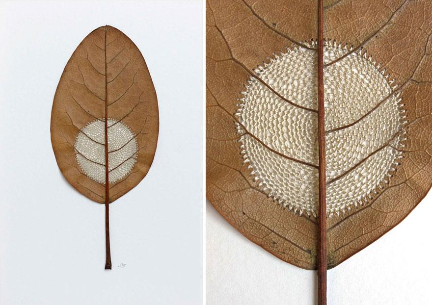 arte-hojas-ganchillo-susanna-bauer (5)