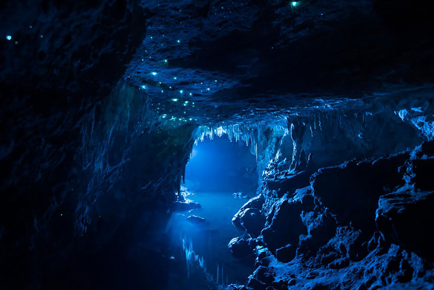 fotografia-cueva-gusanos-brillantes-nueva-zelanda-joseph-michael (5)