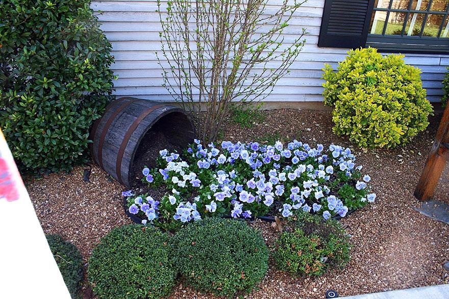 ideas-jardineria-flores-derramadas (12)