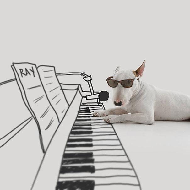 ilustraciones-interactivas-perro-jimmy-choo-rafael-mantesso (11)