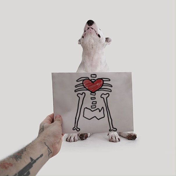 ilustraciones-interactivas-perro-jimmy-choo-rafael-mantesso (14)