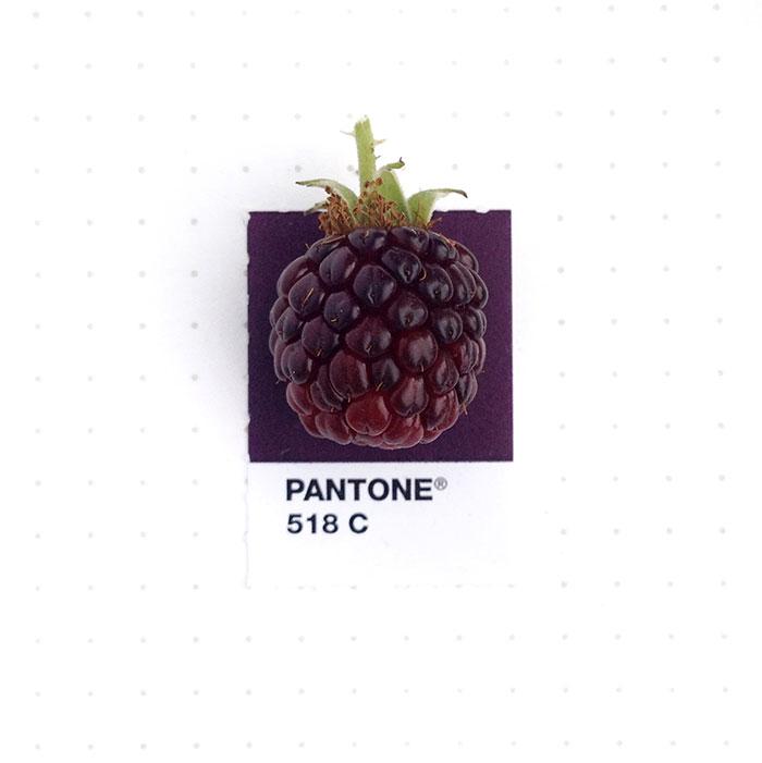parejas-objetos-cotidianos-muestras-color-pantone-pms-inka-mathews (13)