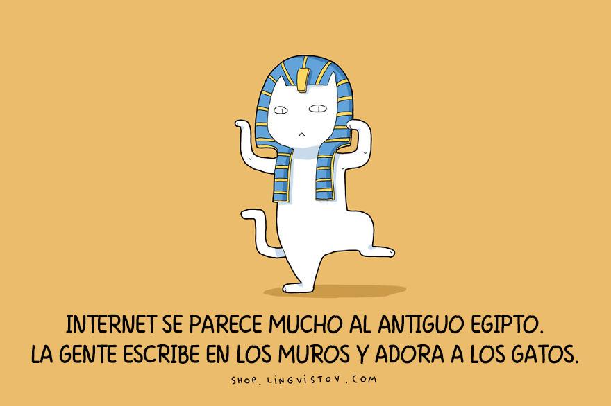 guia-ilustrada-verdades-gatos-7