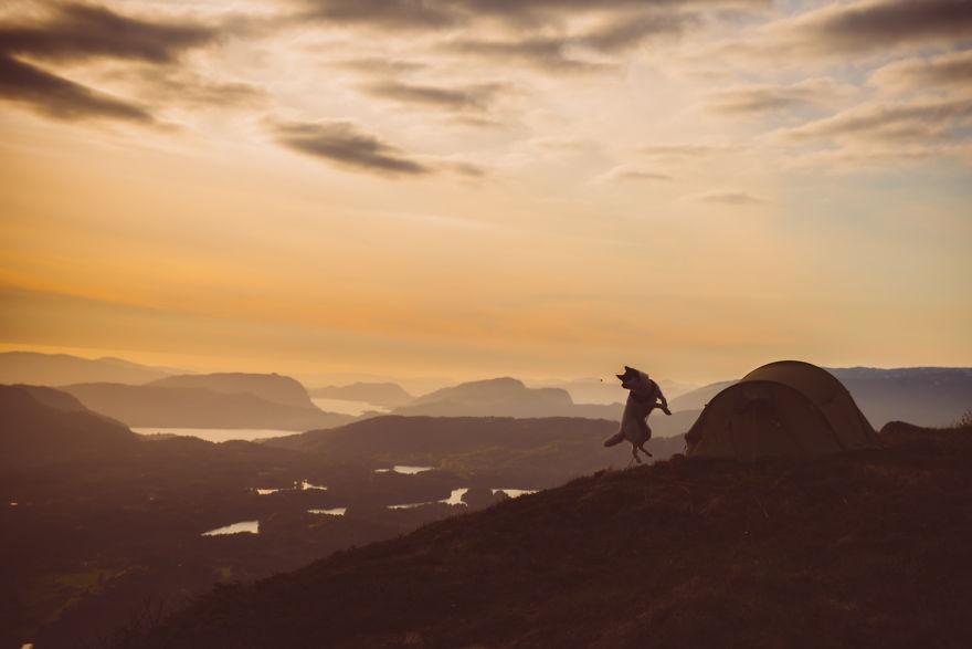 acampada-esqui-noruega-perro-husky-henrik-vikse (13)
