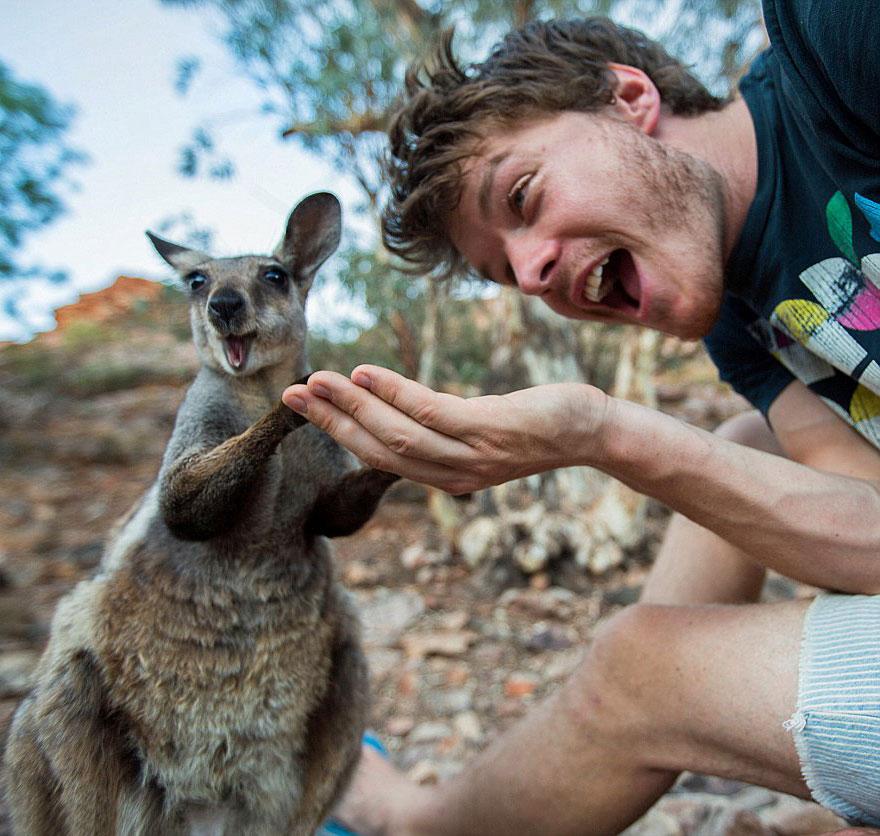 experto-selfies-animales-allan-dixon (11)