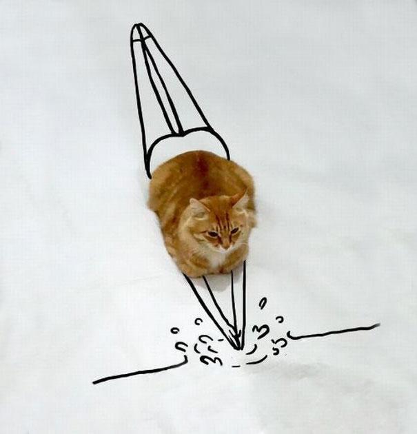 meme-foto-gato-dibujos-divertidos (14)