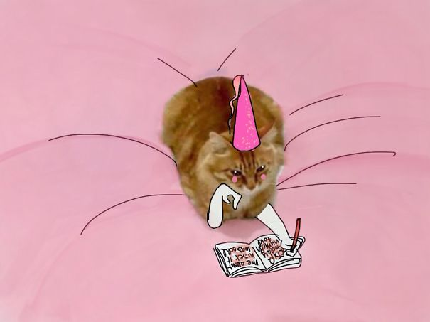 meme-foto-gato-dibujos-divertidos (8)